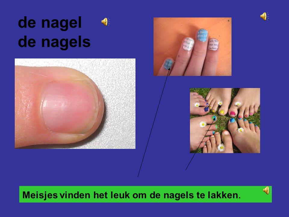 de vinger de vingers de duim de wijsvinger de middenvinger de ringvinger de pink
