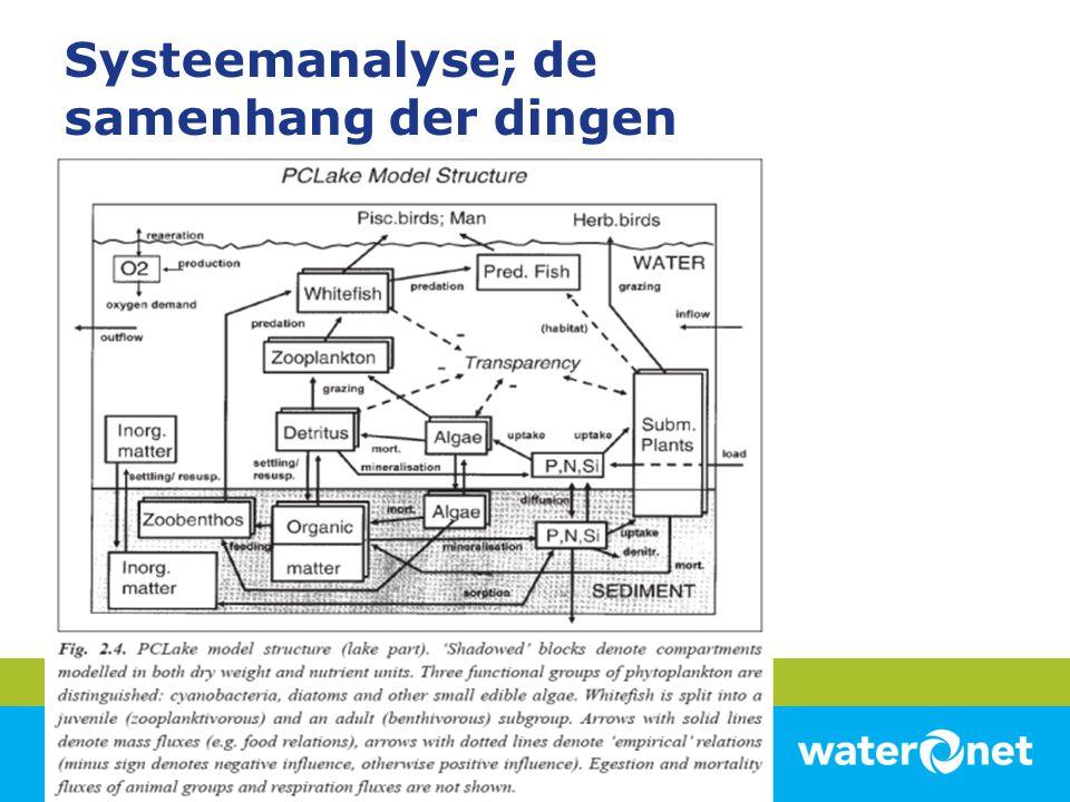 Systeemanalyse; de samenhang der dingen