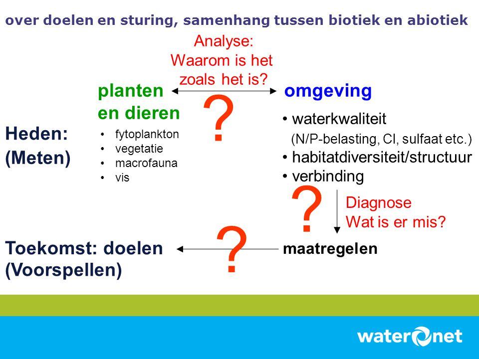 planten en dieren •fytoplankton •vegetatie •macrofauna •vis Heden: Toekomst: doelen Analyse: Waarom is het zoals het is? • waterkwaliteit (N/P-belasti