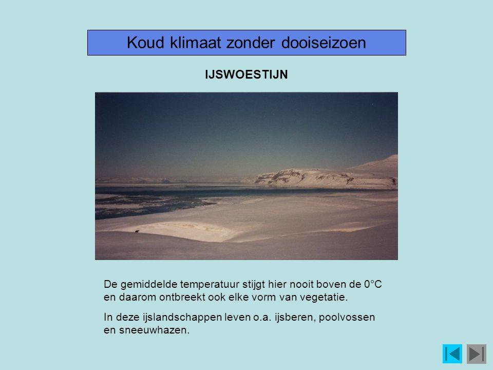 Koud klimaat zonder dooiseizoen De gemiddelde temperatuur stijgt hier nooit boven de 0°C en daarom ontbreekt ook elke vorm van vegetatie.