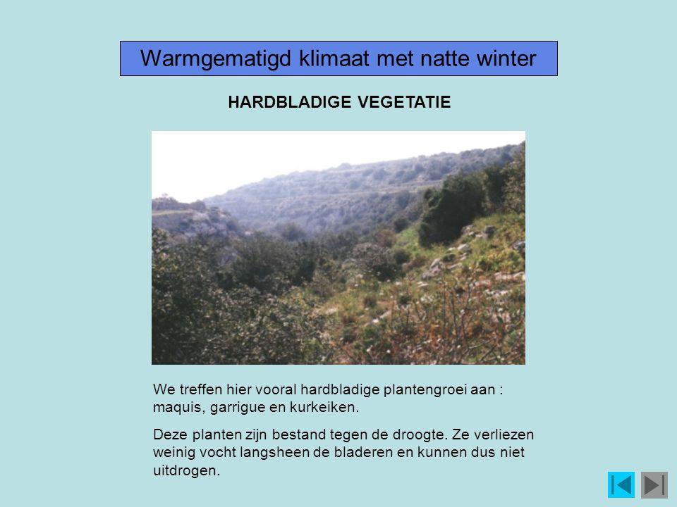 Warmgematigd klimaat met natte winter We treffen hier vooral hardbladige plantengroei aan : maquis, garrigue en kurkeiken.