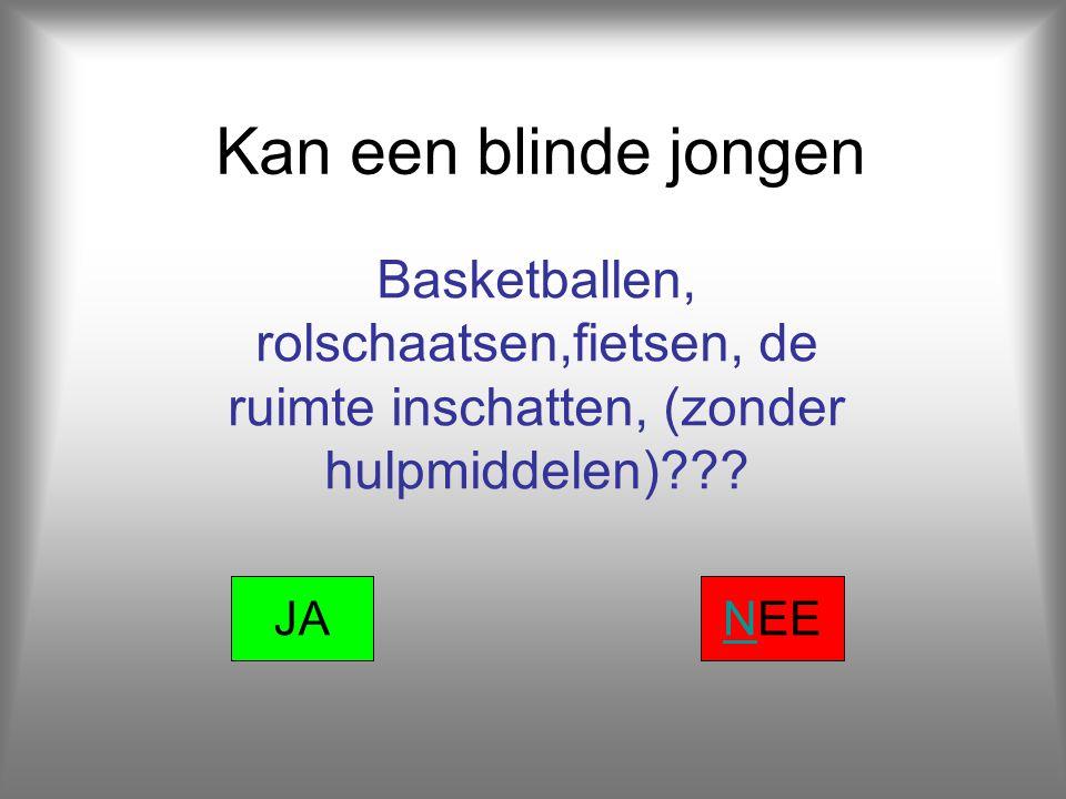 Kan een blinde jongen Basketballen, rolschaatsen,fietsen, de ruimte inschatten, (zonder hulpmiddelen)??.