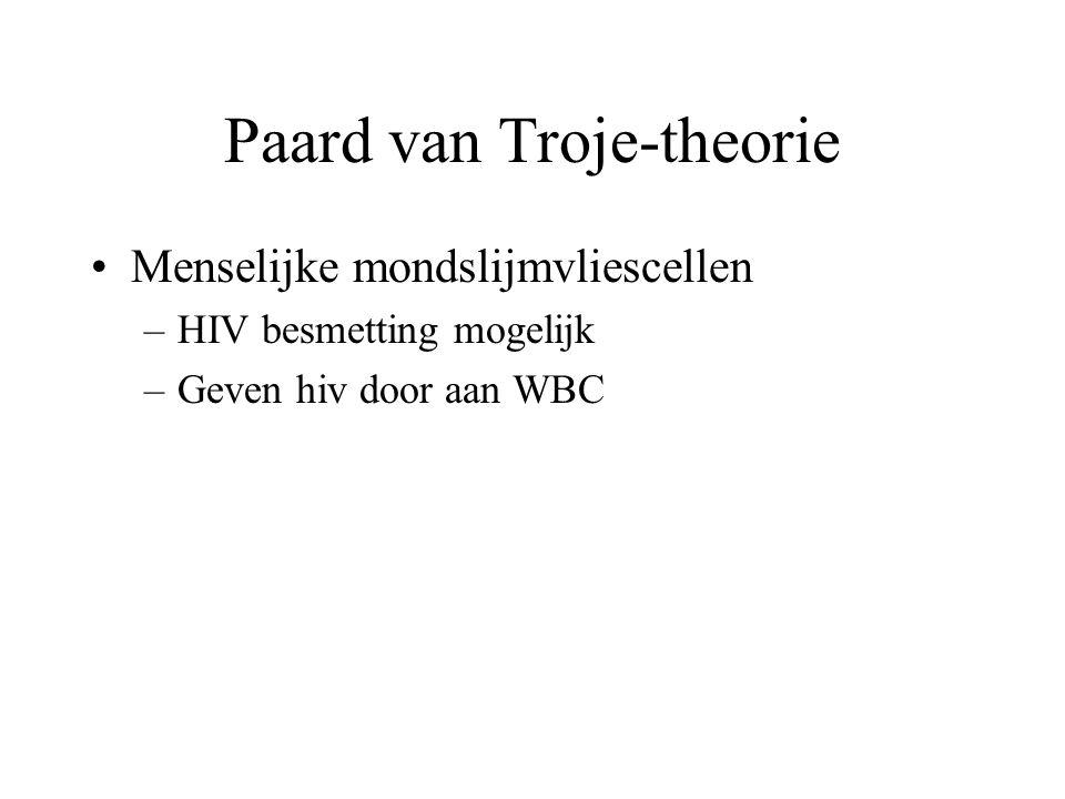 Paard van Troje-theorie •Menselijke mondslijmvliescellen –HIV besmetting mogelijk –Geven hiv door aan WBC