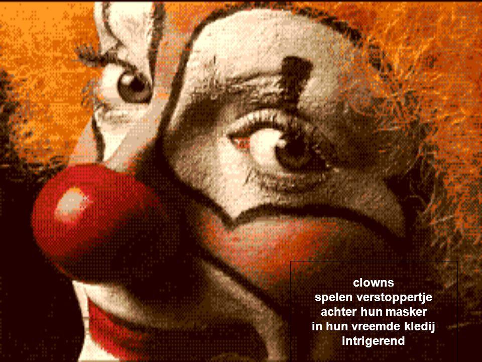 clowns rare kereltjes met veel schmink gekleurde pruiken en neuzen incognito