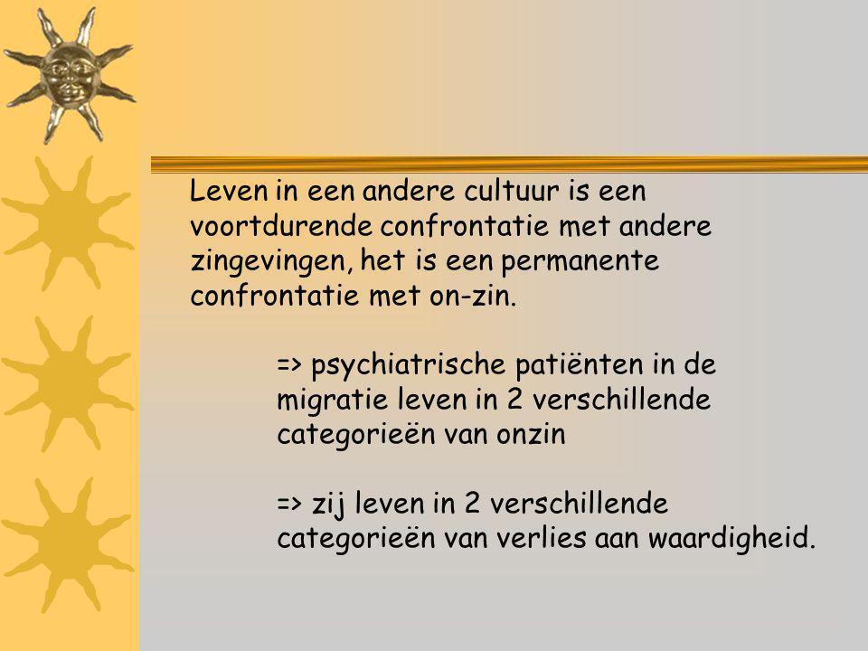 Leven in een andere cultuur is een voortdurende confrontatie met andere zingevingen, het is een permanente confrontatie met on-zin.
