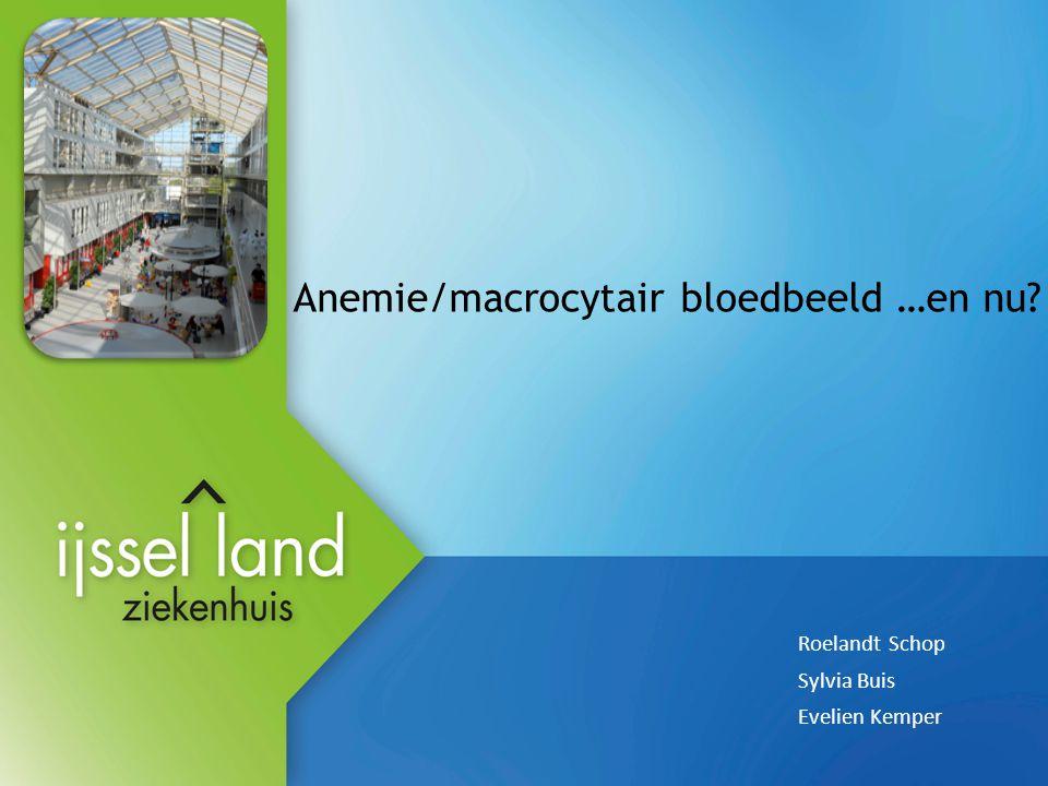 Anemie/macrocytair bloedbeeld …en nu? Roelandt Schop Sylvia Buis Evelien Kemper