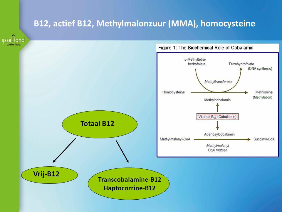 Totaal B12 Vrij-B12 Transcobalamine-B12 Haptocorrine-B12