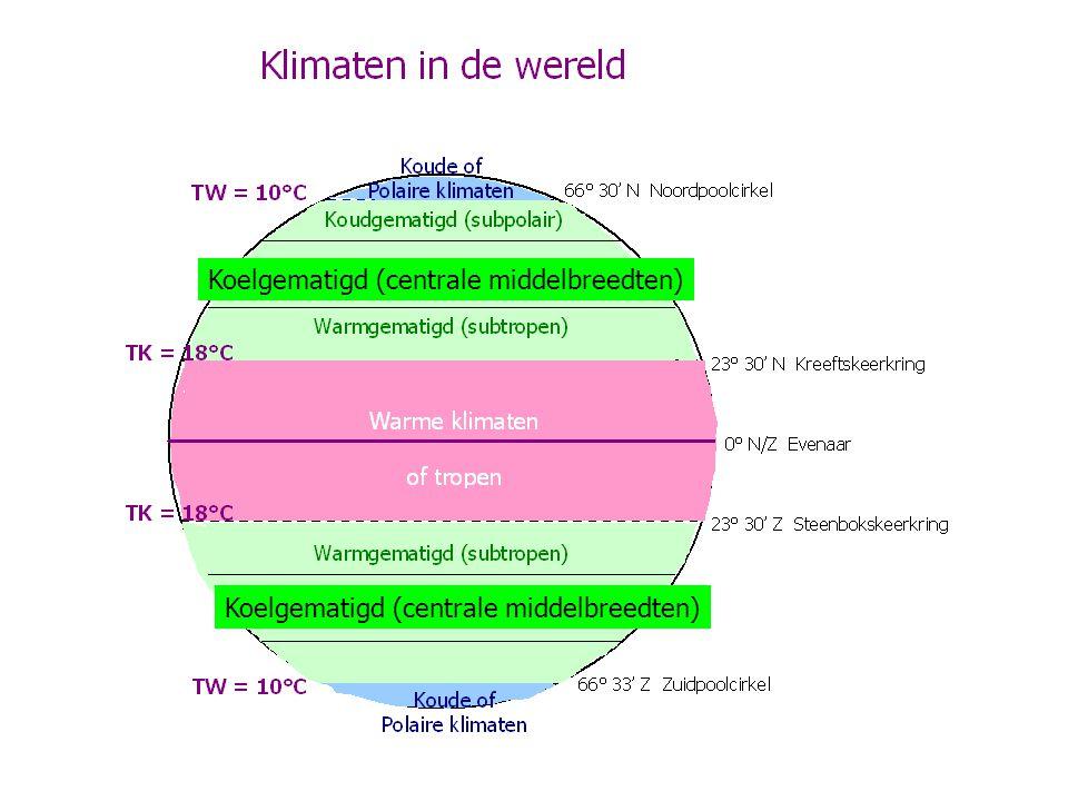 Koelgematigd (centrale middelbreedten)