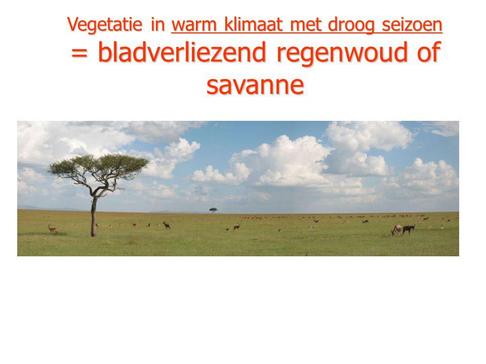 Vegetatie in warm klimaat met droog seizoen = bladverliezend regenwoud of savanne