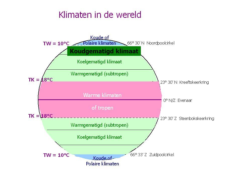 Koudgematigd klimaat