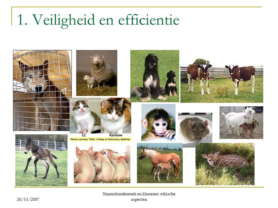 1. Veiligheid en efficientie 26/11/2007 Stamcelonderzoek en kloneren: ethische aspecten 26/11/2007 Stamcelonderzoek en kloneren: ethische aspecten
