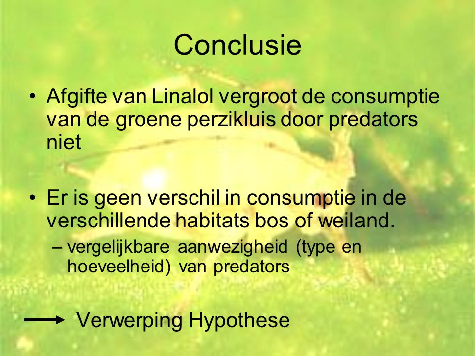Conclusie •Afgifte van Linalol vergroot de consumptie van de groene perzikluis door predators niet •Er is geen verschil in consumptie in de verschille