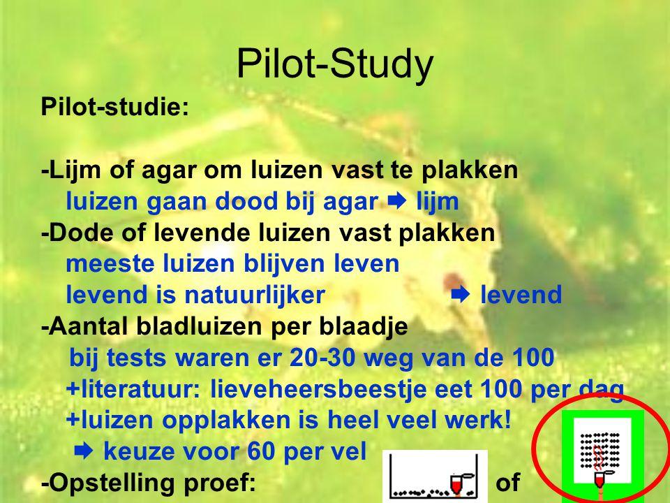 Pilot-Study Pilot-studie: -Lijm of agar om luizen vast te plakken luizen gaan dood bij agar  lijm -Dode of levende luizen vast plakken meeste luizen