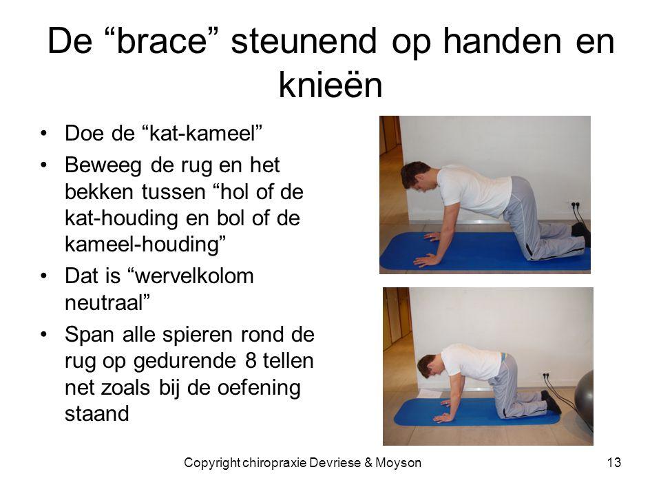 """De """"brace"""" steunend op handen en knieën •Doe de """"kat-kameel"""" •Beweeg de rug en het bekken tussen """"hol of de kat-houding en bol of de kameel-houding"""" •"""