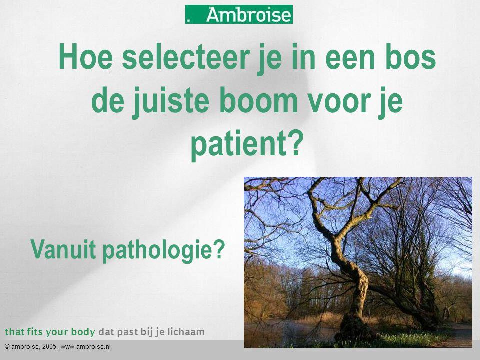 that fits your bodydat past bij je lichaam © ambroise, 2005, www.ambroise.nl Hoe selecteer je in een bos de juiste boom voor je patient? Vanuit pathol