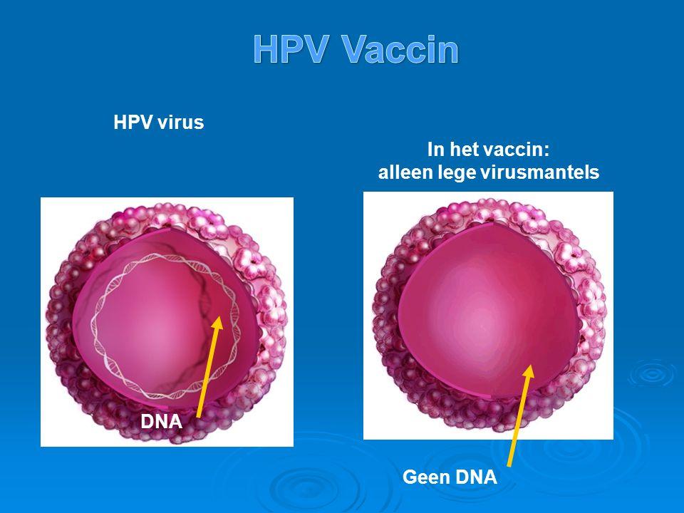 DNA HPV virus In het vaccin: alleen lege virusmantels Geen DNA