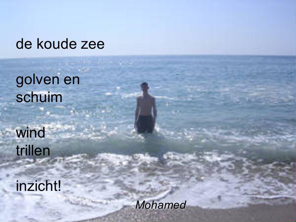 de koude zee golven en schuim wind trillen inzicht! Mohamed