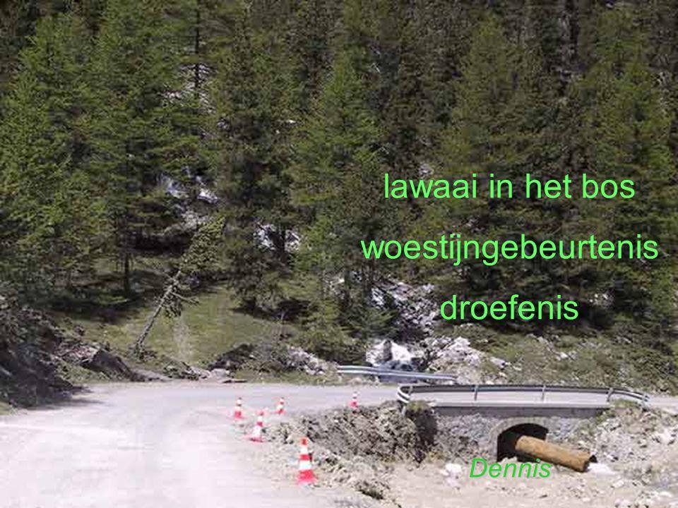 lawaai in het bos woestijngebeurtenis droefenisDennis