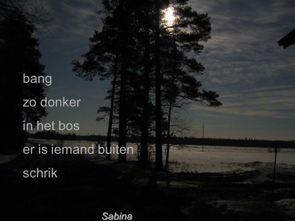 bang zo donker in het bos er is iemand buiten schrik Sabina Sabina