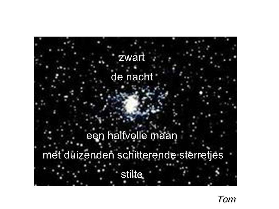 zwart de nacht een halfvolle maan met duizenden schitterende sterretjes stilte Tom Tom Tom