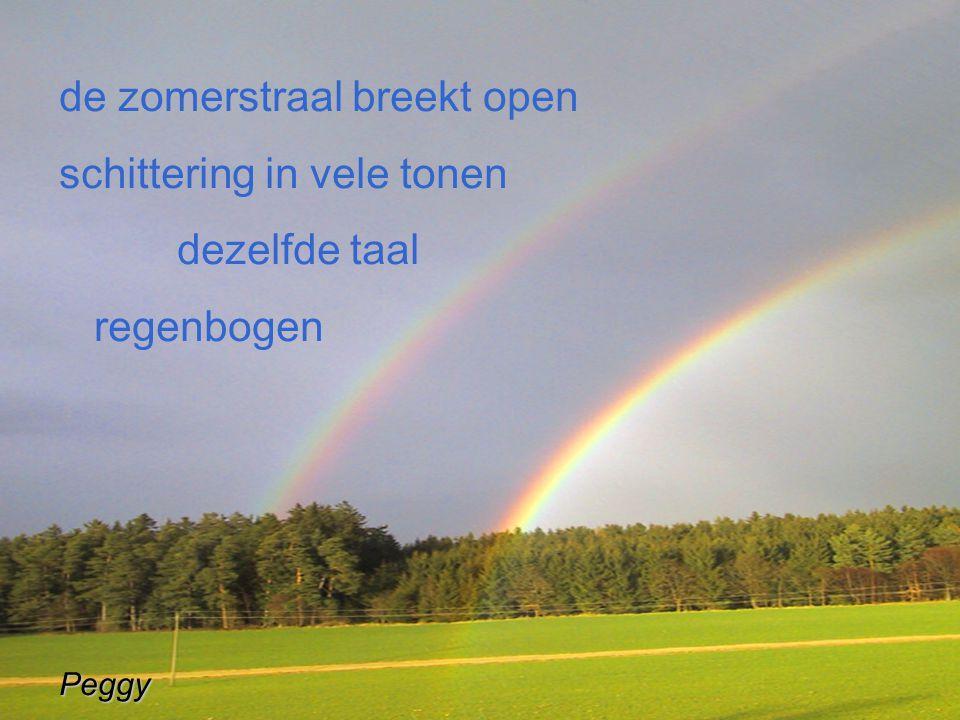 de zomerstraal breekt open schittering in vele tonen dezelfde taal regenbogenPeggy