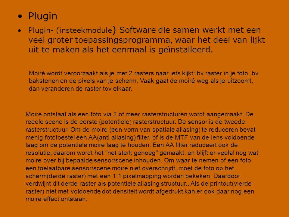 •Plugin •Plugin- (insteekmodule ) Software die samen werkt met een veel groter toepassingsprogramma, waar het deel van lijkt uit te maken als het eenm