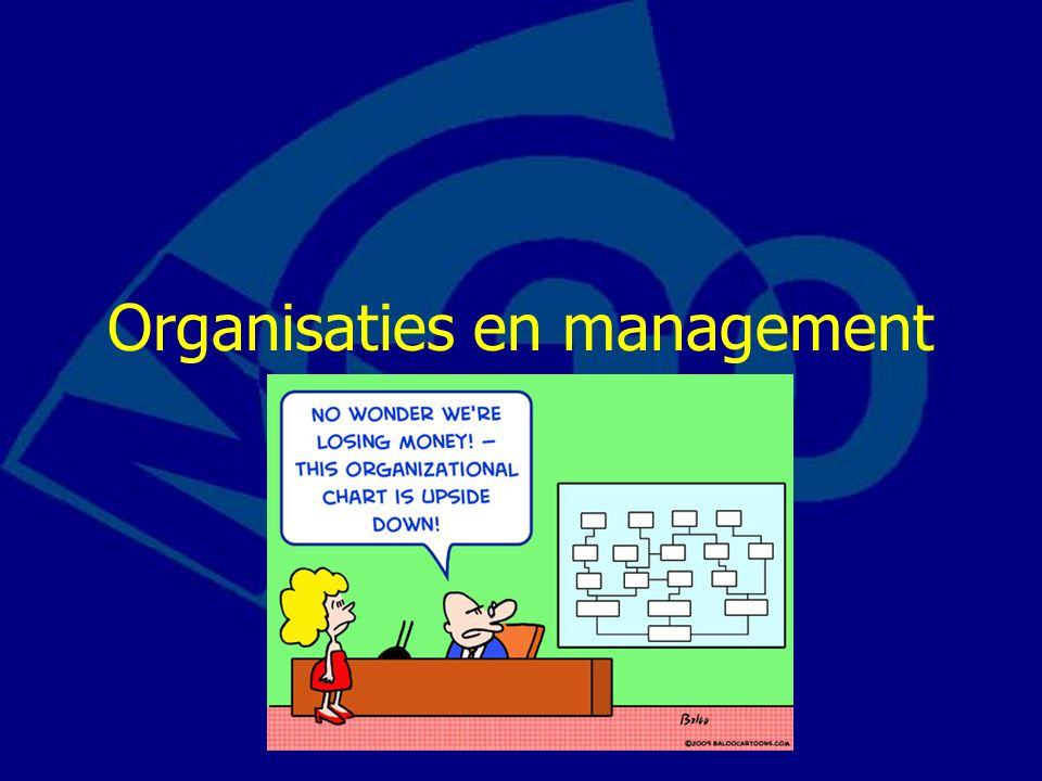 Organisaties en management