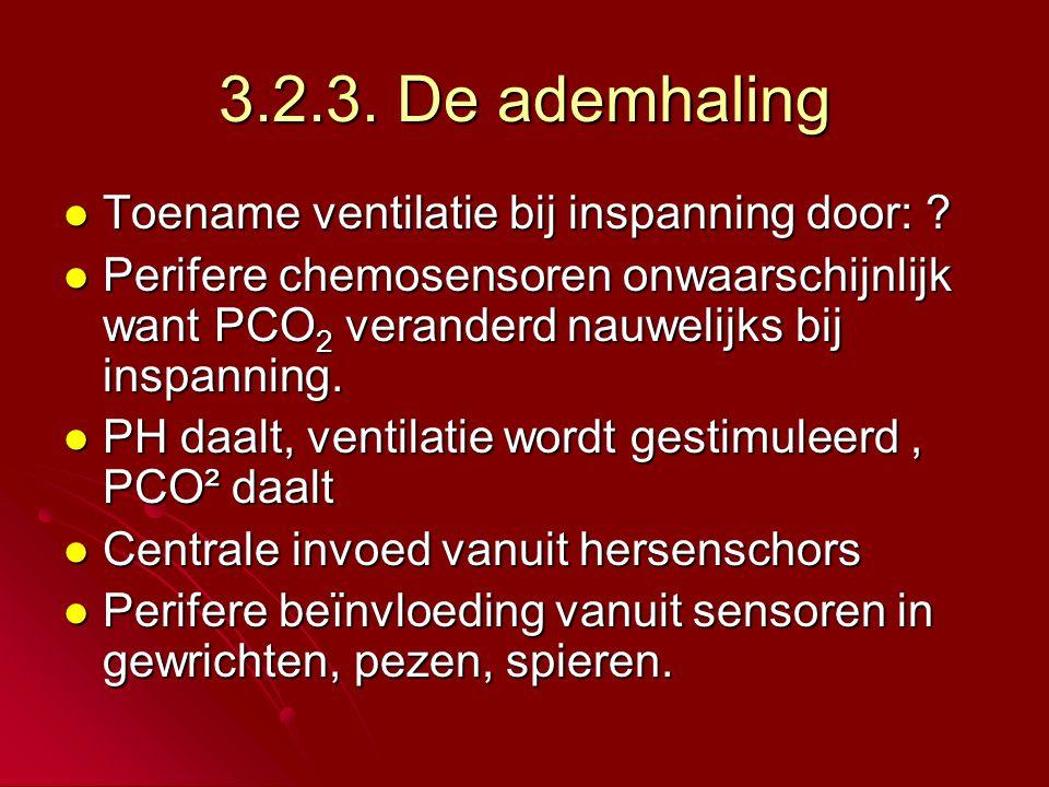 3.2.3.De ademhaling  Toename ventilatie bij inspanning door: .