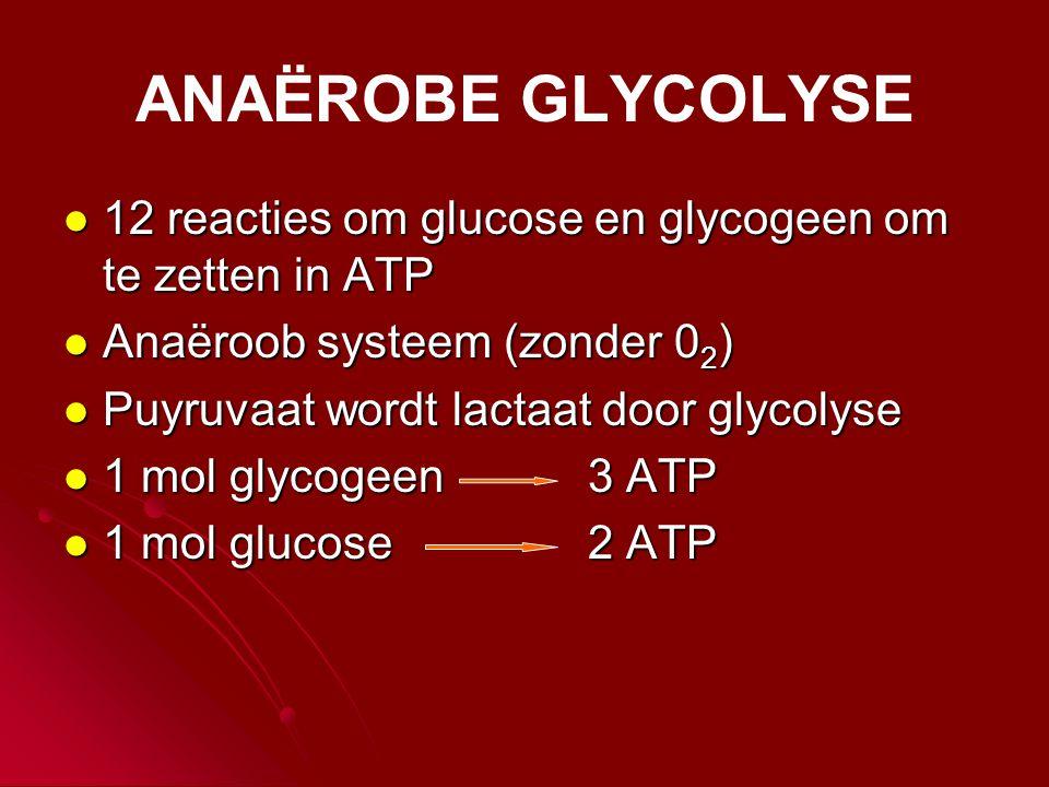 ANAËROBE GLYCOLYSE  12 reacties om glucose en glycogeen om te zetten in ATP  Anaëroob systeem (zonder 0 2 )  Puyruvaat wordt lactaat door glycolyse  1 mol glycogeen 3 ATP  1 mol glucose 2 ATP