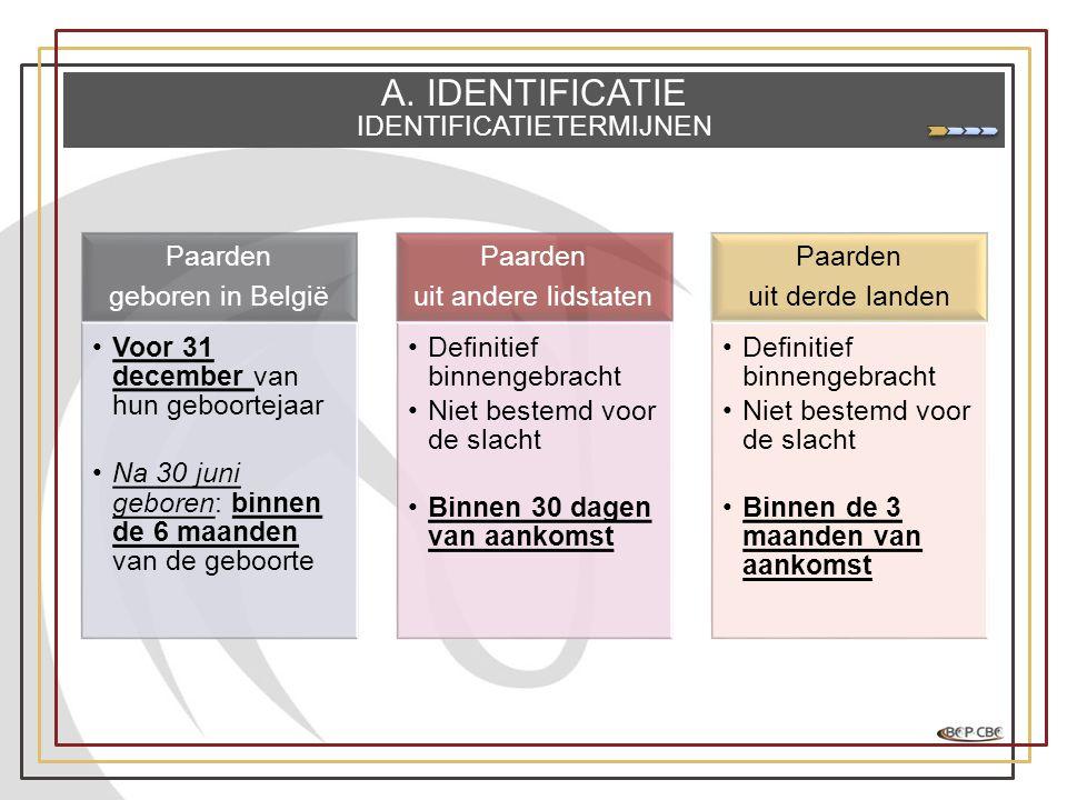 A. IDENTIFICATIE IDENTIFICATIETERMIJNEN Paarden geboren in België •Voor 31 december van hun geboortejaar •Na 30 juni geboren: binnen de 6 maanden van