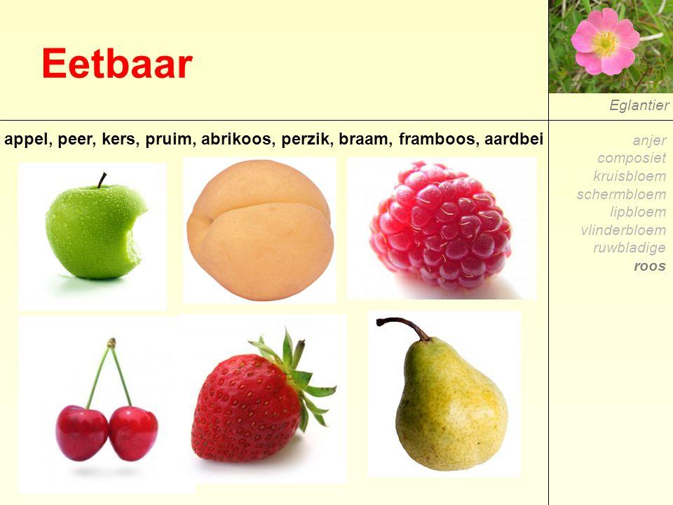 Eetbaar Eglantier appel, peer, kers, pruim, abrikoos, perzik, braam, framboos, aardbei anjer composiet kruisbloem schermbloem lipbloem vlinderbloem ru
