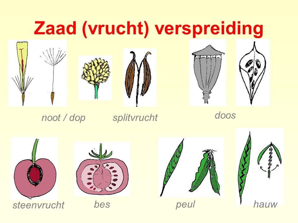 Planten families 1.550 soorten - 550 algemeen - 1.000 zeldzaam - ca.