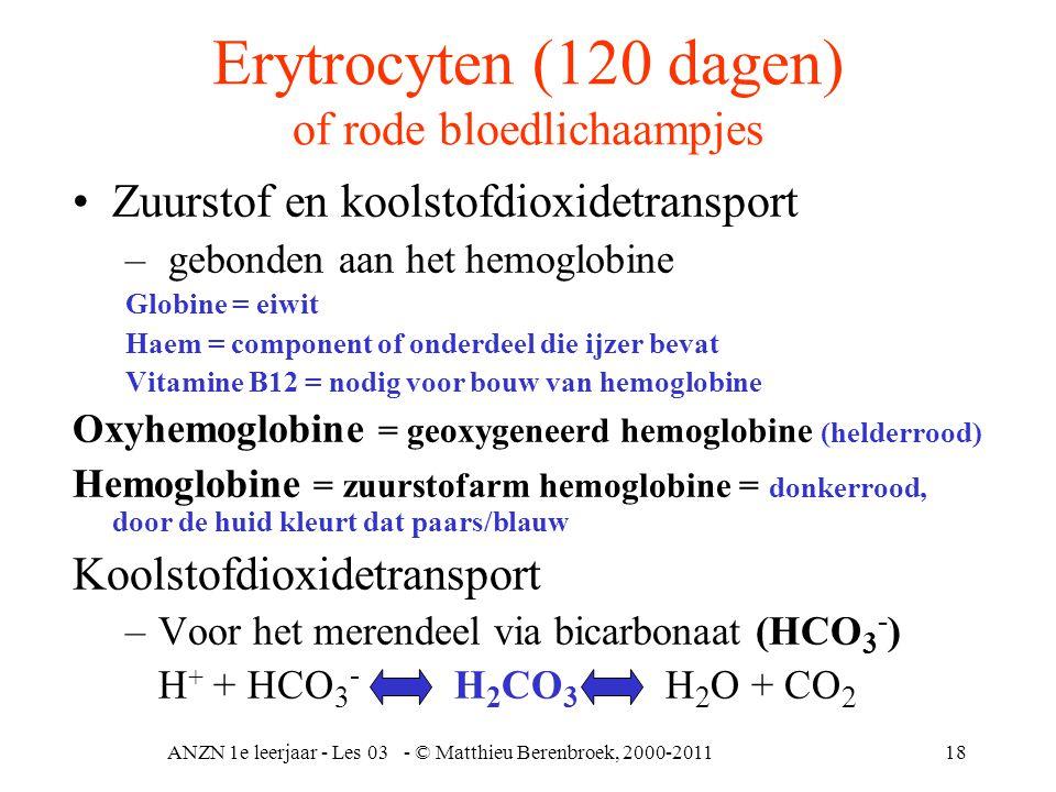ANZN 1e leerjaar - Les 03 - © Matthieu Berenbroek, 2000-201118 Erytrocyten (120 dagen) of rode bloedlichaampjes •Zuurstof en koolstofdioxidetransport