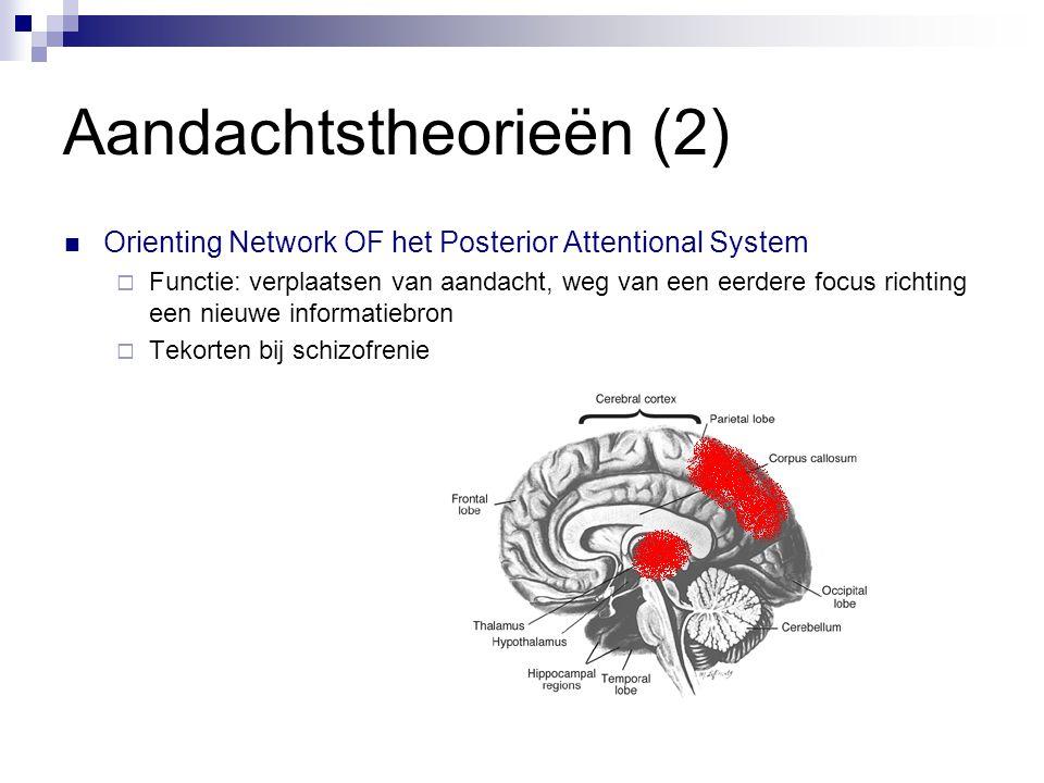 Aandachtstheorieën (2)  Orienting Network OF het Posterior Attentional System  Functie: verplaatsen van aandacht, weg van een eerdere focus richting