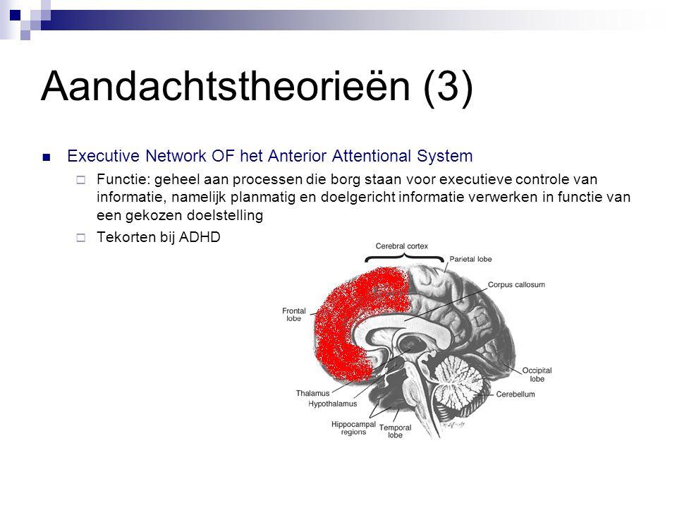 Aandachtstheorieën (3)  Executive Network OF het Anterior Attentional System  Functie: geheel aan processen die borg staan voor executieve controle