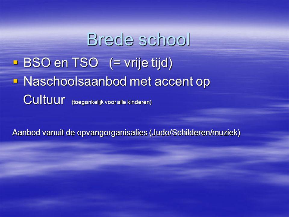 Brede school Brede school  BSO en TSO (= vrije tijd)  Naschoolsaanbod met accent op Cultuur (toegankelijk voor alle kinderen) Cultuur (toegankelijk