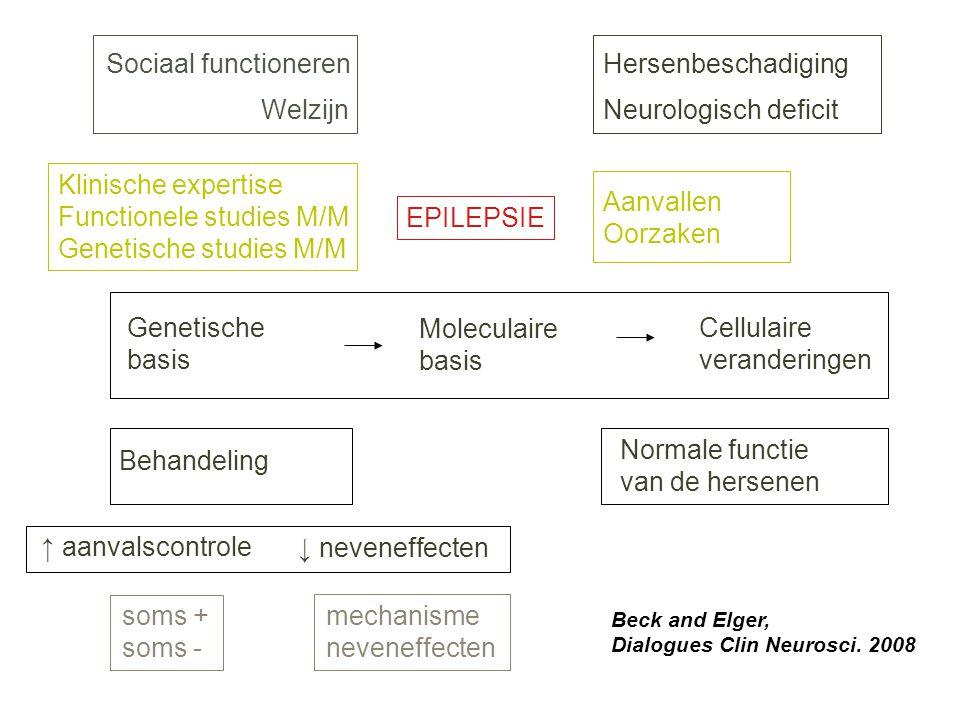 EPILEPSIE Hersenbeschadiging Neurologisch deficit Sociaal functioneren Welzijn Genetische basis Moleculaire basis Cellulaire veranderingen Behandeling