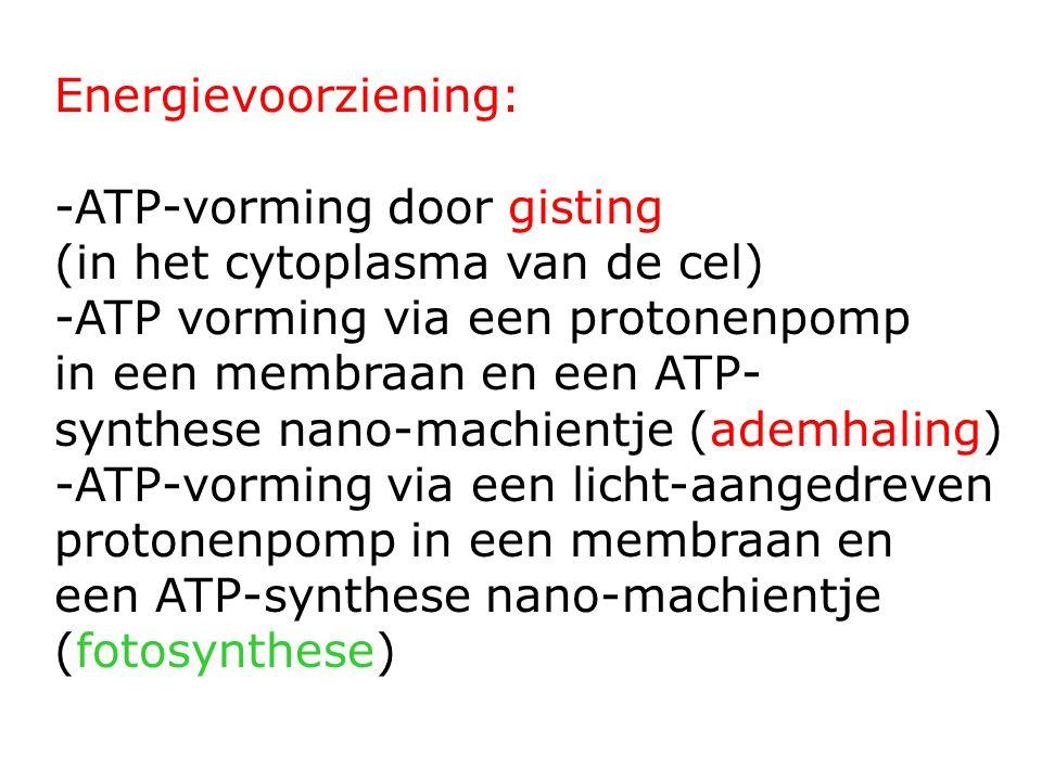 Energievoorziening: -ATP-vorming door gisting (in het cytoplasma van de cel) -ATP vorming via een protonenpomp in een membraan en een ATP- synthese nano-machientje (ademhaling) -ATP-vorming via een licht-aangedreven protonenpomp in een membraan en een ATP-synthese nano-machientje (fotosynthese)