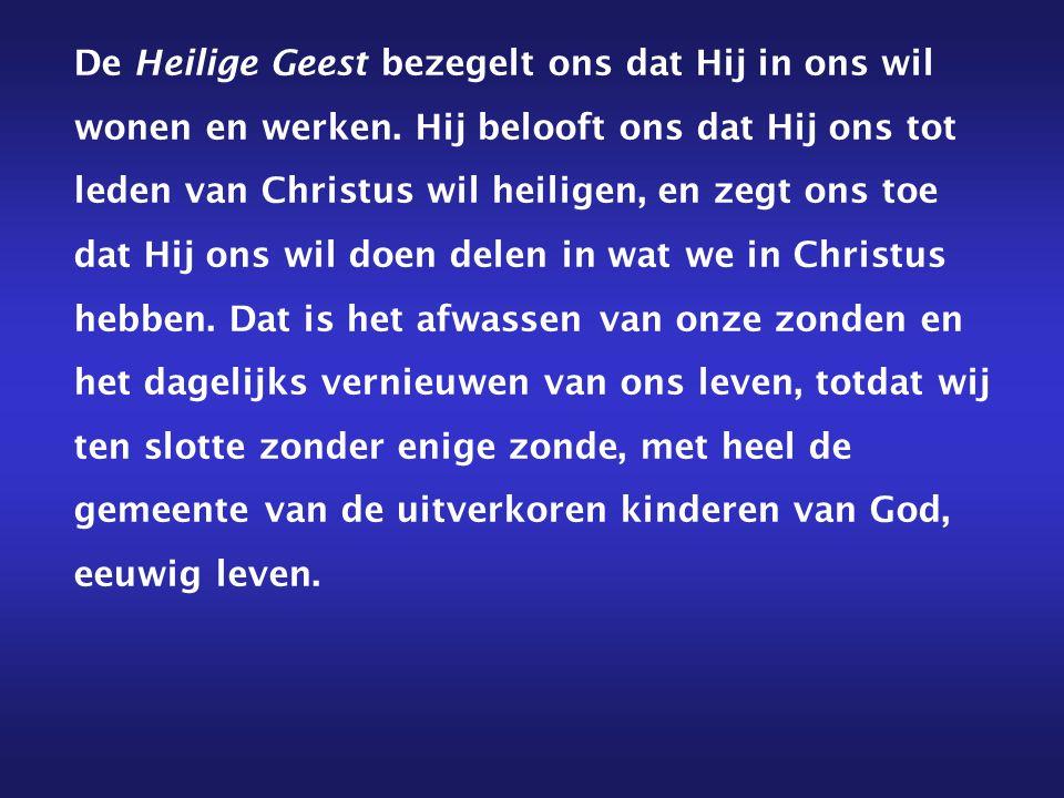 Geef hem daarom, drie-enige God, oprecht geloof in U, hartelijke liefde tot U en sterke hoop op U.