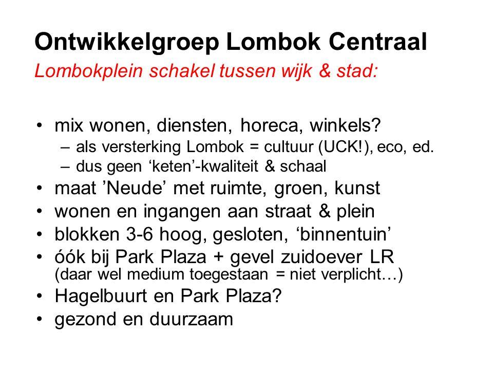 Ontwikkelgroep Lombok Centraal Lombokplein schakel tussen wijk & stad: •mix wonen, diensten, horeca, winkels.