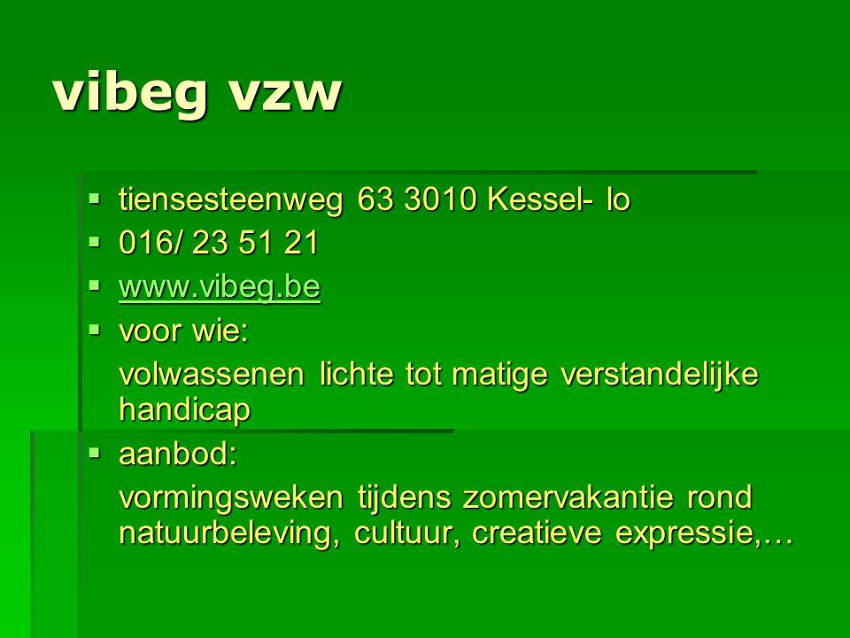 vibeg vzw  tiensesteenweg 63 3010 Kessel- lo  016/ 23 51 21  www.vibeg.be www.vibeg.be  voor wie: volwassenen lichte tot matige verstandelijke han