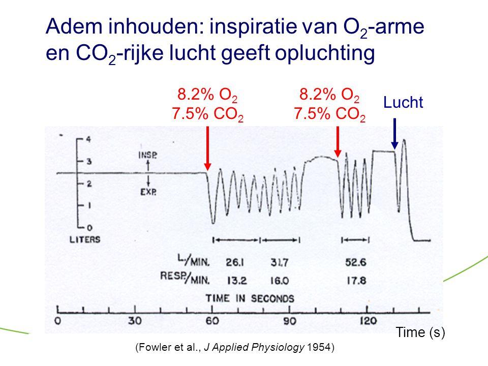 Adem inhouden: inspiratie van O 2 -arme en CO 2 -rijke lucht geeft opluchting 8.2% O 2 7.5% CO 2 8.2% O 2 7.5% CO 2 Lucht (Fowler et al., J Applied Ph