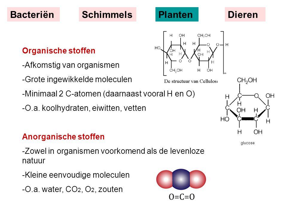 BacteriënSchimmelsPlantenDieren Organische stoffen -Afkomstig van organismen -Grote ingewikkelde moleculen -Minimaal 2 C-atomen (daarnaast vooral H en