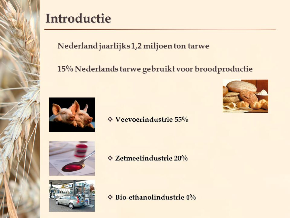 Introductie 15% Nederlands tarwe gebruikt voor broodproductie  Veevoerindustrie 55%  Zetmeelindustrie 20%  Bio-ethanolindustrie 4% Nederland jaarlijks 1,2 miljoen ton tarwe