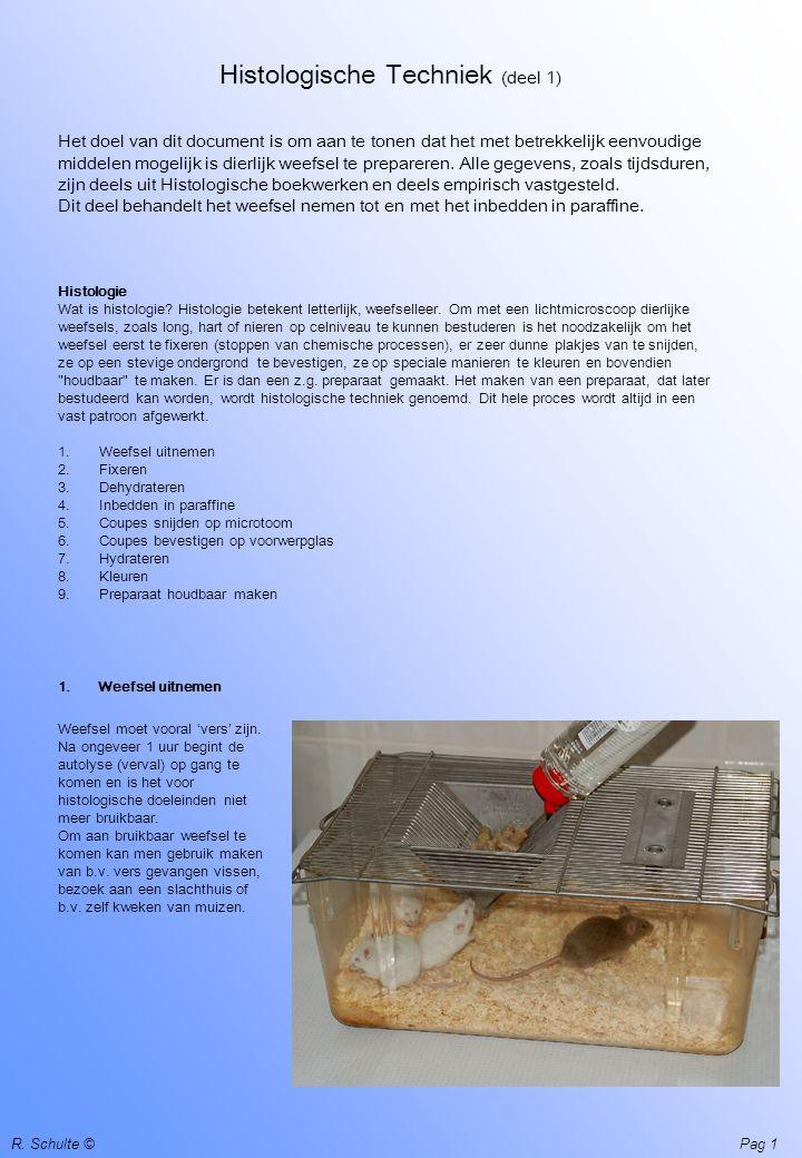1 R. Schulte © Histologische Techniek (deel 1) Het doel van dit document is om aan te tonen dat het met betrekkelijk eenvoudige middelen mogelijk is d