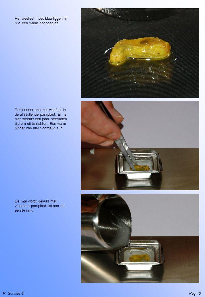 R. Schulte ©Pag 13 Het weefsel moet klaarliggen in b.v. een warm horlogeglas Positioneer snel het weefsel in de al stollende paraplast. Er is hier sle