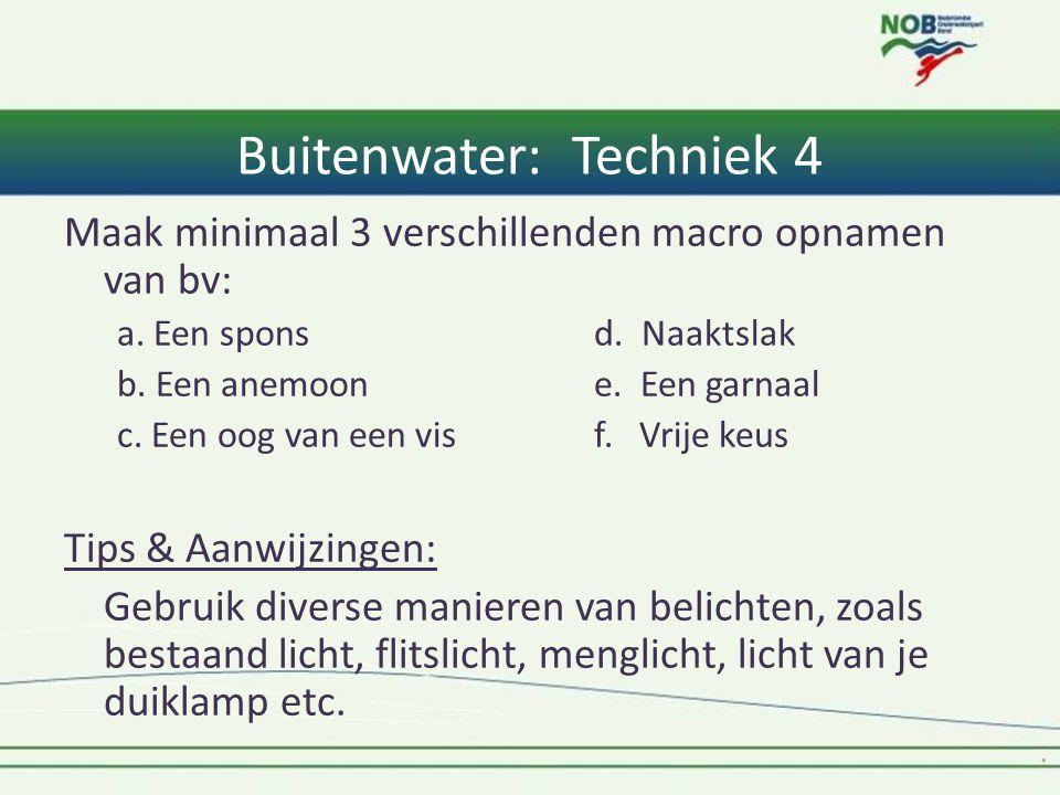 Buitenwater: Techniek 4 Maak minimaal 3 verschillenden macro opnamen van bv: a. Een spons d. Naaktslak b. Een anemoone. Een garnaal c. Een oog van een