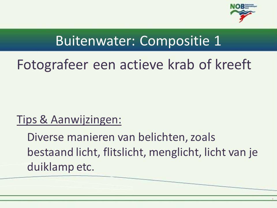 Buitenwater: Compositie 1 Fotografeer een actieve krab of kreeft Tips & Aanwijzingen: Diverse manieren van belichten, zoals bestaand licht, flitslicht