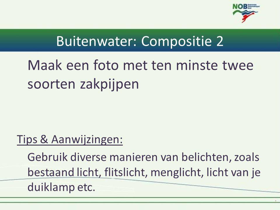 Buitenwater: Compositie 2 Maak een foto met ten minste twee soorten zakpijpen Tips & Aanwijzingen: Gebruik diverse manieren van belichten, zoals besta