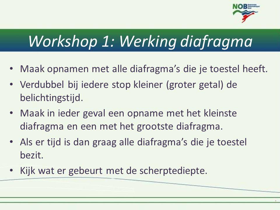 Workshop 1: Werking diafragma • Maak opnamen met alle diafragma's die je toestel heeft. • Verdubbel bij iedere stop kleiner (groter getal) de belichti